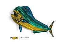 Fish Art and More / by Costa Sunglasses