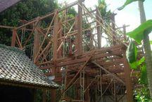 ubud's project