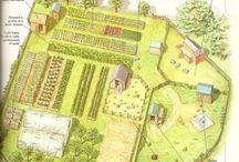 farm layout dreams