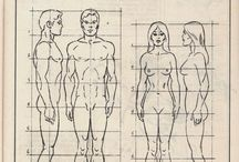 proporcje, anatomia