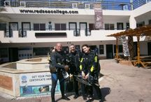 Our daily diving / Photos from our daily life as Diving Instructors working at the Red Sea College.