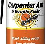 Top 10 Best Ant Killers in 2017 Reviews