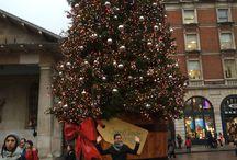Christmas! / Festive Season!