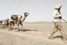 Gobi 2011 Expedition