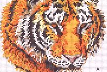 tygr 2