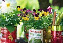 Garden Fun / by Mary Jo Duffy