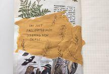 journals & sketch books
