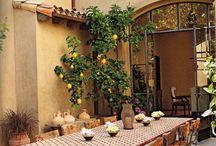 I t a l i a n . H o m e / Ideas for our home in Italy.
