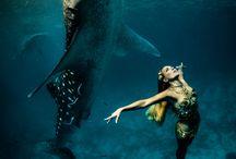 "inspiration: PHOTOGRAPHY: SHAWN HEINRICHS + KRISTIAN SCHMIDT: ""WHALE SHARK FASHION"""