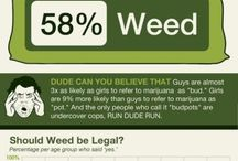 The More you Know / by Ziggy's 420 Bake Page