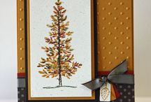 AUTUMN stampin up CARDS / by Joan Green