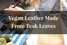 Vegan Fashion Innovation / Innovative materials that are changing the future of fashion