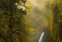 Naturaleza / by Charo Corpas