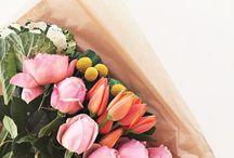 |~flowers~|