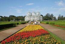 Curitiba / Um guia completo do que fazer em Curitiba: passeios, restaurantes e pontos turísticos!