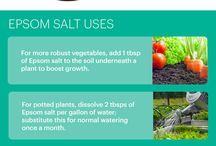 Epson salt