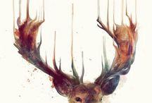 Dessin, illustrations
