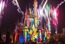 Family Vacation to Disney World / Disney World