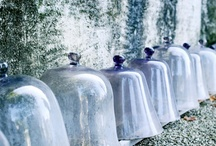 Cloches / by Barbie Winter