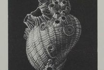 Contempory wood engravings & wood cuts / Study, ideas and influences for printmaking.