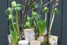 inšpirácie jar