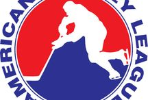Americal Hockey League / Minor League Hockey Teams / by NiceRink.com