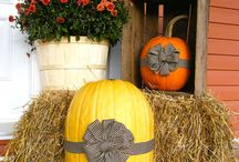 Fall in love with autumn / Pumpkins, halloween, orange and love