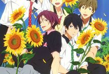 Free! / Free! is a Japanese anime television series directed by Hiroko Utsumi and produced by Kyoto Animation and Animation Do. The anime is based on the light novel written by Kōji Ōji, High Speed! An animated film, High Speed! - Free! Starting Days, was released on December 5, 2015.  https://en.wikipedia.org/wiki/Free!_(anime)