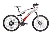 Electric Mountain Bikes / eBikes for off road riding.
