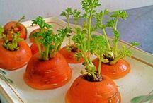 Recup légumes à planter