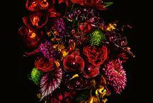 Azuma Makoto flower arrengement