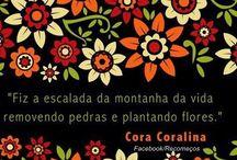 Cora Carolina