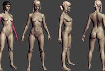 여자 인체