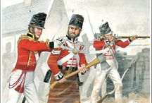 British Napoleonic period Foot Guard Regiments