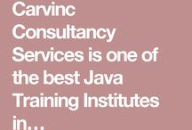 Carvinc Consultancy Services / Carvinc Consultancy services is the developing organization which are specialized in many services like software development etc.