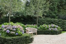 Garden, my love!