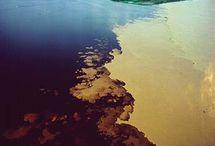 Meu Amazonas