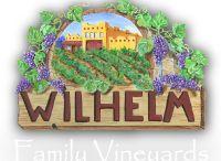 Wineries / It's wine o'clock