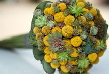Bouquets- Yellow wedding flowers and billy button bouquets / #Yellow #wedding #flowers  #bouquets using #billybuttons