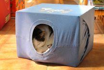 Ideas for my cat Totoro