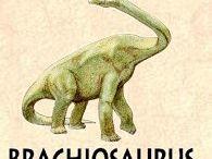 Dinosaures / Connaître les dinosaures