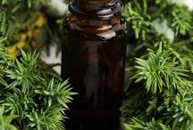 Essential Oils - alternative to meds / by Gail Kutchera Colgan