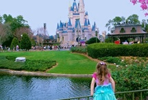 Disney : The Most Magical Place on Earth / Everything Disney to tickle your fancy
