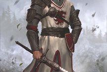 Paladinos/Cavaleiros