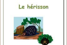 Le hérisson / Lapbook sur le hérisson, de l'Association Carpe Diem