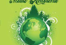 Día Mundial del Medio Ambiente. 5 de junio. / Imágenes relacionadas con el día del medio ambiente. 5 de junio.