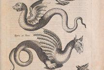 Ulisse Aldrovandi and followers Monstrorum historia