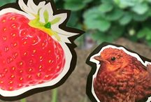 Thema: De moestuin (groente, fruit & bloemen)