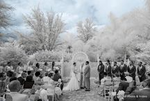 Infrared Photography / Each of our photographers own a camera that has been specially modified to shoot infrared photos. The camera sees a light spectrum we can't and creates these dramatic  special photo effects.  All photos by Affordable Pro Photo & Video.