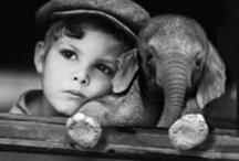 "cuteness "") / by Brandy Schaa"